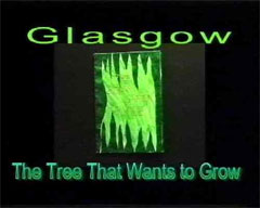 Glasgow: The Tree That Wants To Grow